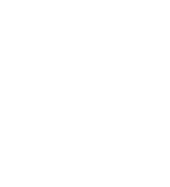 Homeowner icon